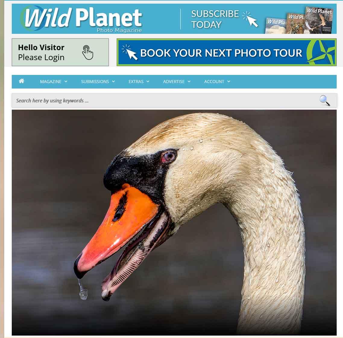 Wild Planet Photography Magazine